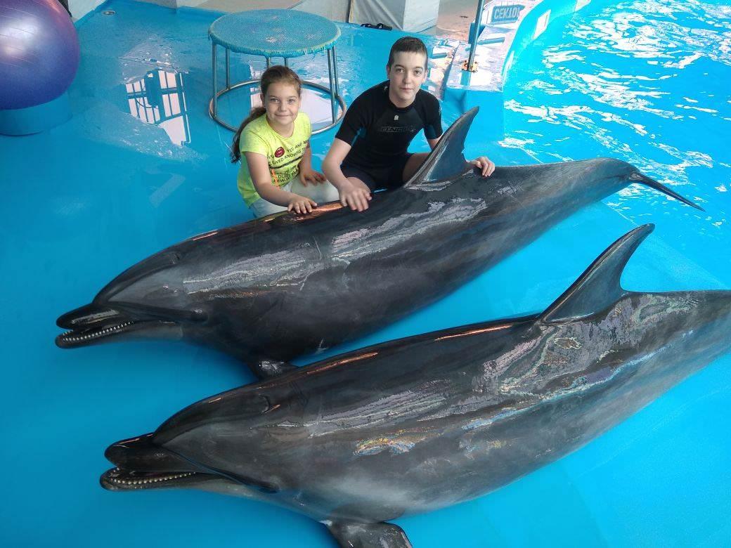 Дельфинотерапия для маленьких пациентов КазНИИОиР