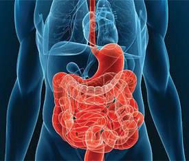 Вниманию специалистов! Конференция «Современные возможности терапии опухолей желудочно-кишечного тракта и мочеполовой системы»