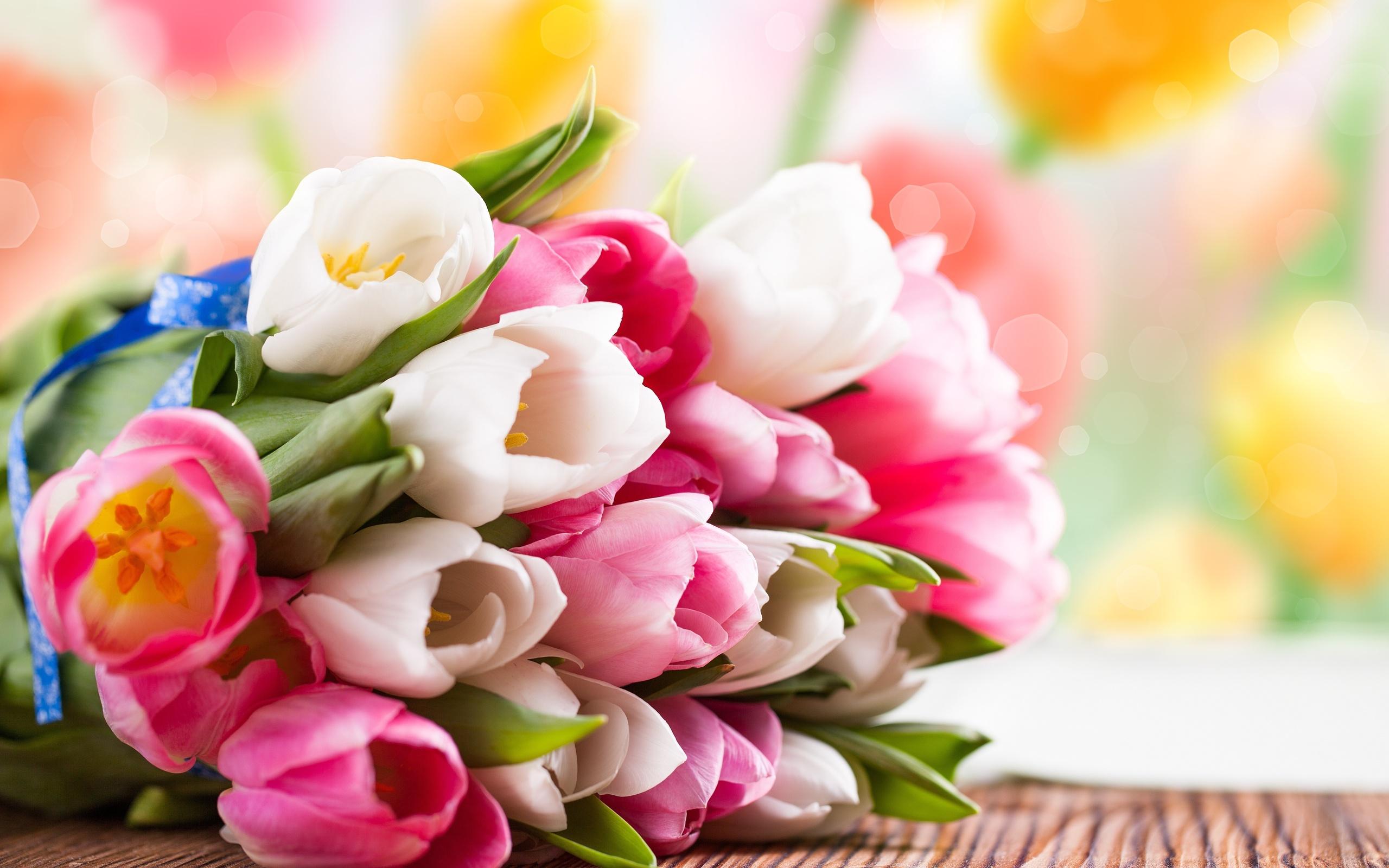 Поздравляем всех прекрасных женщин с праздником 8 марта!